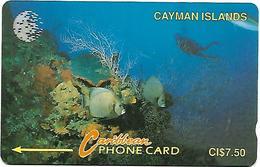 @+ IlesCaiman - Diver In Reef (White New Logo) - 5CCIA...... Ref: CAY-5A - Iles Cayman