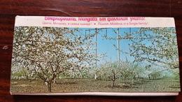 Moldova - Postcard  Set Of The Moldave  Lanscape, People  And Architecture - 15 PCs Lot - 1980s - Moldavië