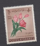 AFGHANISTAN 1961 * YT N° 581 - Afghanistan