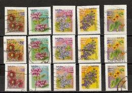 Afrique Du Sud 2000 - Fleurs - Petit Lot De 15 Dentelés Sur 2/3/4 Côtés - Marguerite- Violet - Pelargonium - Gazania - Timbres