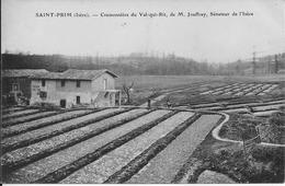 SAINT-PRIM (Isère) - CRESSONNIERE Du VAL-QUI-RIT, De M. JOUFFRAY, SENATEUR De L'ISERE - Animée - Correspondance - France