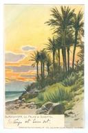 1900's Italy, Bordighera, Le Palme Di Scheffel. Printed Art Pc, Used. - Imperia