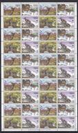 E1423 2005 TAJIKISTAN WWF FAUNA WILD ANIMALS BHARALS !!! 1 BIG SH MNH - W.W.F.
