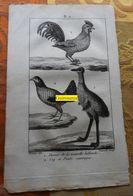 Casoar Et Coq Sauvage : Planche Du Nouveau Dictionnaire D'histoire Naturelle - 1803 - Stampe & Incisioni