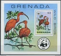 W19 WWF W.W.F. Grenada MNH Souvenir Sheet 1978 : Wild Birds / Bird - W.W.F.