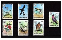 W18 WWF W.W.F. Grenada MNH Perf Stamps 1978 : Wild Birds / Bird - W.W.F.