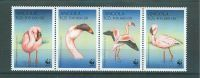 (WWF-259) W.W.F Angola Birds MNH Stamps 1999 - W.W.F.