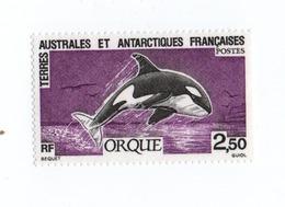 M-P18L6 TAAF FSAT Antarctic Neuf ** MNH Orque 1993 N 177 - Tierras Australes Y Antárticas Francesas (TAAF)