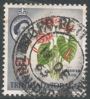 Trinidad & Tobago. 1960-67 QEII. 60c Used. SG 295 - Trinidad & Tobago (...-1961)
