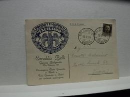 BOLZANETO   -- GENOVA --   ESNALDO BELLI  -- PRODOTTI GOMMATI EXCELSIOR - Genova (Genua)