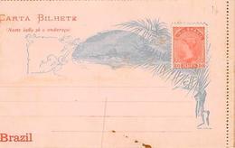 Brazil. Brésil.  Carta Bilhete. Casa Da Moeda   Carte Lettre.non écrite A L Intérieur     (voir Scan) - Brazil