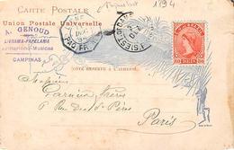 Brazil. Brésil.   Rio De Janeiro    Voyagée En 1894   Cachet De Paquebot   Rare  ( Coin écorné Voir Scan) - Rio De Janeiro