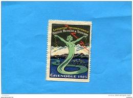 FRANCE--ERINNOPHILIE-- Vignette-grenoble 1925-exposition Houille Blanche & Tourisme NSG - Commemorative Labels