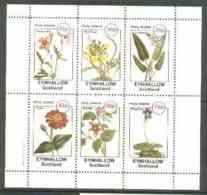Eynhallow 1982 Flowers #27 (Crane's Bill, Wall-Flower, Pontederia, Zinnia, Bramble & Pinguicula) Perf Set Of 6 Values Un - Local Issues