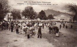 VESOUL    Le Champ De Foire Et La Motte - Vesoul