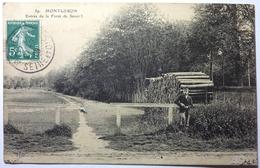 ENTRÉE DE LA FORÊT DE SÉNART - MONTGERON - Montgeron
