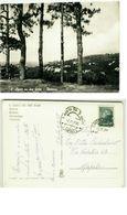 SAN AGATA SUI DUE GOLFI ( NAPOLI ) DINTORNI - ED. DI GENNARO - 1966 (2530) - Napoli (Naples)