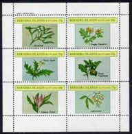Bernera 1982 Plants #2 (Mistletoe, Thorn Apple, Etc) Perf Set Of 6 Values (15p To 75p) Unmounted Mint FLOWERS - Local Issues