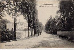 Cambo Les Bains Avenue De Bayonne Et Le Couvent - Cambo-les-Bains