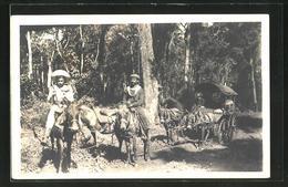 AK Paraguay, Reiter Und Fuhrwerk Im Wald - Paraguay
