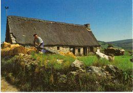 St Antheme Jasserie Du Coq Noir - Autres Communes