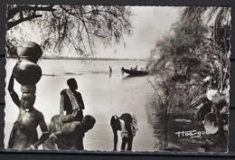 Carte Photo, Cameroun, Les Porteurs D'eau - Cameroun
