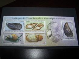 TAAF  BLOC ANNEE 2014  NEUF  :  Mollusques Des Terres Australes Et Antarctiques Francaises - Blocs-feuillets