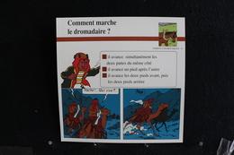 Fiche Atlas, TINTIN (extrait De, Coke En Stock) - Animaux Domestiques N°31. Comment Marche Le Dromadaire  ? - Sammlungen