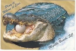 GOLF: Myrtle Beach, South Carolina - SC Golf Courses - Crocodile, Golf Ball - (USA) - Golf