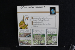Fichet Atlas,TINTIN (exrait De, Les Cuigares Du Pharaon) - Histoire De La Vie , N°63  Qu'es-ce Qu'un Ruminant? - Collections