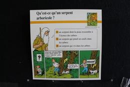Fichet Atlas, TINTIN (exrait De,L'Oreille Cassée) - Animaux Sauvages, N°44. Qu'est-ce Qu'un Serpent Arboricole - Sammlungen