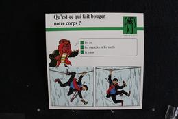 Fichet Atlas, TINTIN (exrait De, Le Temple Du Soleil) - Animaux Sauvages, N°5. Qu'est-ce Qui Fait Bouger Notre Corp ? - Collections