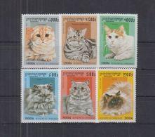R551. Cambodia - MNH - Nature - Animals - Cats - Briefmarken