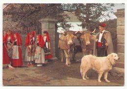 GROUPE DES CHANTEURS MONTAGNARDS DE LOURDES - Folklore