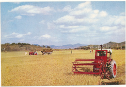 COREE DU NORD - La Récolte Abondante De Riz, Tracteurs - Korea, North
