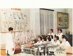 COREE DU NORD , PYONGYANG - Les Pionniers, Laboratoire De Recherche Chimique - Korea, North