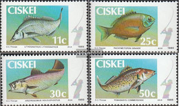 South Africa - Ciskei 70-73 (complete.issue.) Unmounted Mint / Never Hinged 1985 Fish - Ciskei