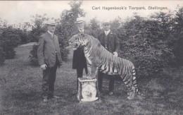 2525196Stellingen, Carl Hagenbeck's Tierpark. - Stellingen