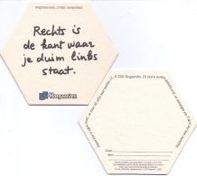 #D223-043 Viltje Hoegaarden - Beer Mats