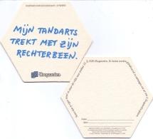#D223-065 Viltje Hoegaarden - Beer Mats