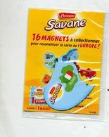 Magnet Brossard Savane Europe Irlande - Magnets