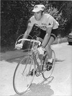 PHOTO COUREUR BELGE EDDY MERCKX - Cycling