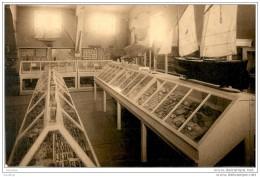D33  ARCACHON Musée Aquarium Une Salle Du Musée  ..... Peu Courante - Arcachon