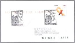 CORREO OR ZEPPELIN - MAIL BY ZEPPELIN. Angra Do Heroismo, Portugal, 2000 - Correo Postal