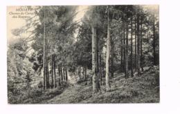Chemin Du Camp Des Romains. - Modave