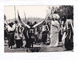 CPSM : 15 X 10,5  -  35  -  PRESENTATION  D'UNE  VACHE  AU  ROI  DU  RUANDA - Ruanda-Urundi