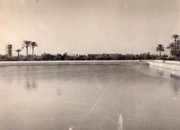 Maroc Marrakech Jardins De La Menara Bassin Ancienne Photo 1940's - Africa