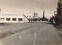 Maroc Aéroport De Marrakech-Ménara Pres Du Bar Air Atlas Ancienne Photo 1940's - Africa