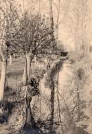 France Scene A La Campagne Arbres Et Cours D'eau Ancienne Photo 1930's - Places