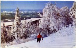 CANADA  LAURENTIDES  Skiing At Mont Tremblant Ski Sci - Quebec